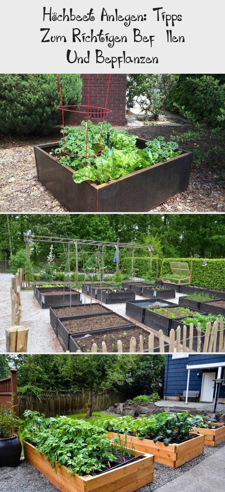 Hochbeet Gestalten Tipps Zum Richtigen Befullen Und Pflanzen Hochbeet Apply Plants