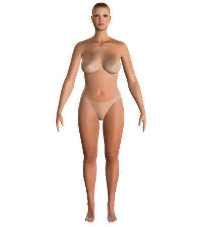 Your virtual body    Enter your measurements and find out what is