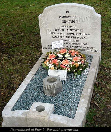 Purr N Fur Uk Cats In Wartime Pdsa Animal Cemetery Ilford Pet Cemetery Brave Animals Cemetery Headstones
