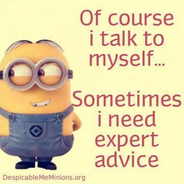The Minions Say Exactly What We're All Thinking
