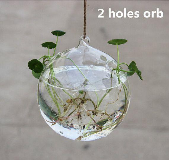 Diese Globusform Glasvase Wird Mit Hohem Bor Silikonglas, Klar Und Light.It  Kann Mit Hanfschnur Oder Fischdraht, Angewendet Zum Hängenden  Wasserpflanzer ...