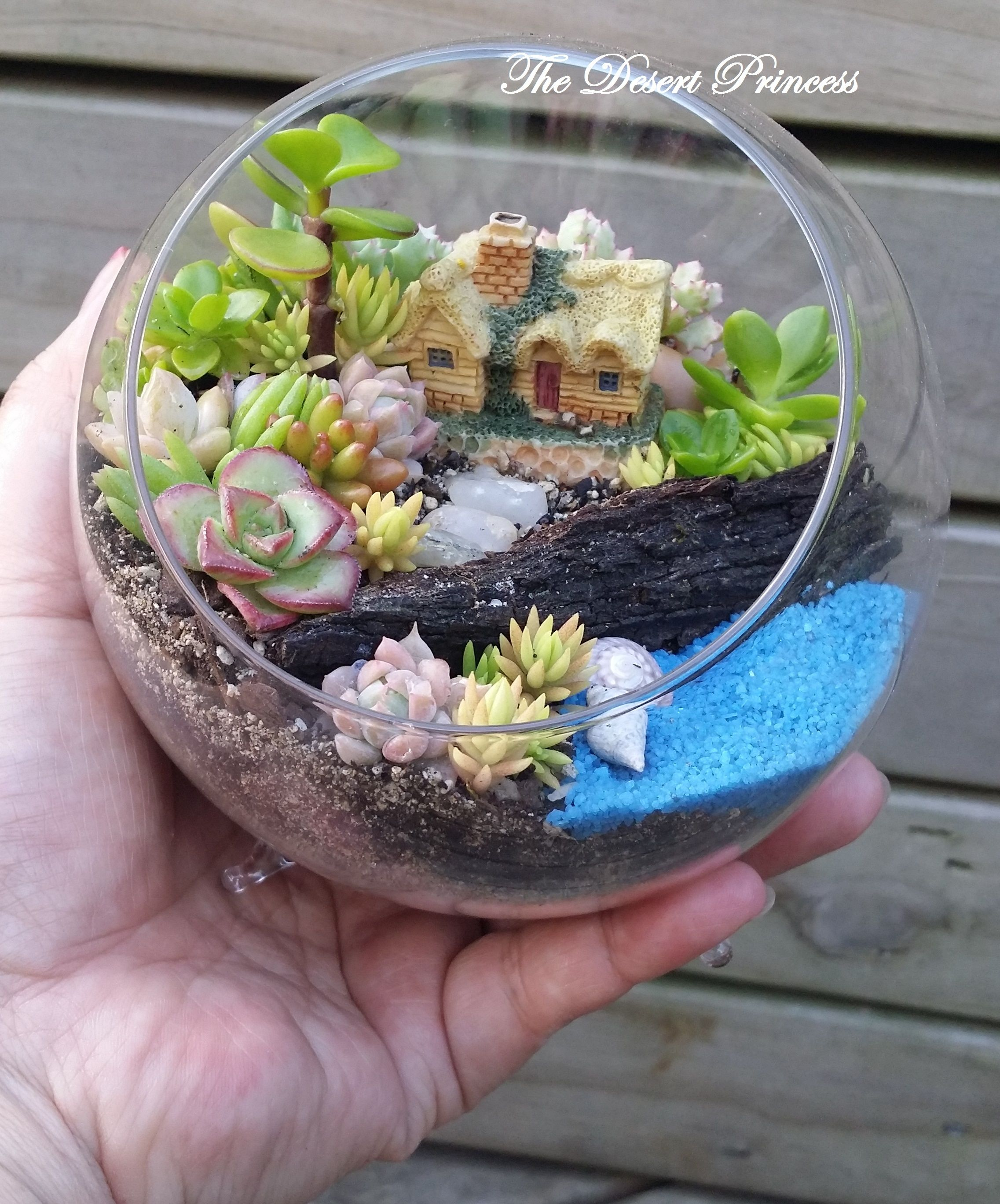 Lovely Succulent Fairy Garden Terrarium Design By The Desert Princess  Www.facebook.com/thedesertprincess1006