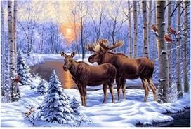 Image result for moose diamond painting