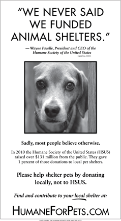 Image of: Ohio Donate To Local Animal Shelters Humane Society Of The United States Used To Be About Protecting The Rights Of Animals And Children But The President Has Oregon Humane Society Donate To Local Animal Shelters Humane Society Of The United States