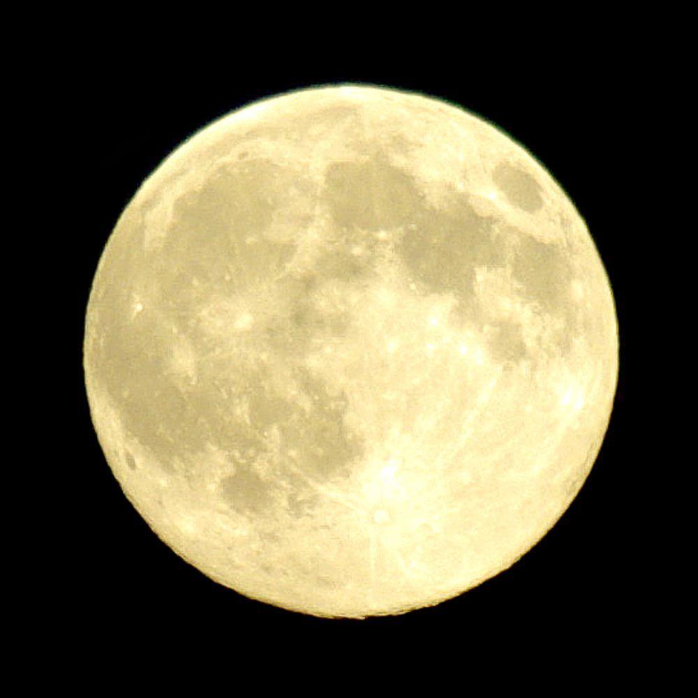 Free image on pixabay moon full moon night – Artofit