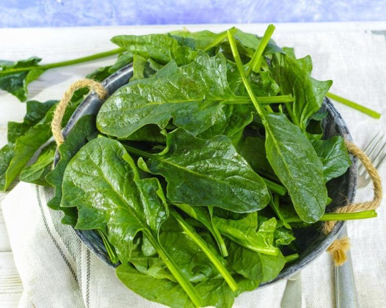 Los 15 Beneficios De Las Espinacas Para La Salud Tenareshi Verduras Receta Crepes Mejores Recetas