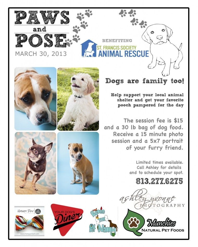 Page Not Found Newborn Photographer Animal Rescue Fundraising Dog Rescue Fundraising Dog Fundraiser