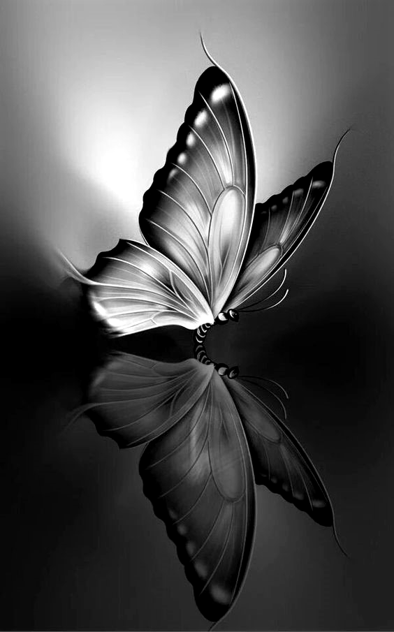 New Dark Wallpapers For I Phone Download Ashueffects Blue Butterfly Wallpaper Butterfly Wallpaper Iphone Butterfly Wallpaper Backgrounds
