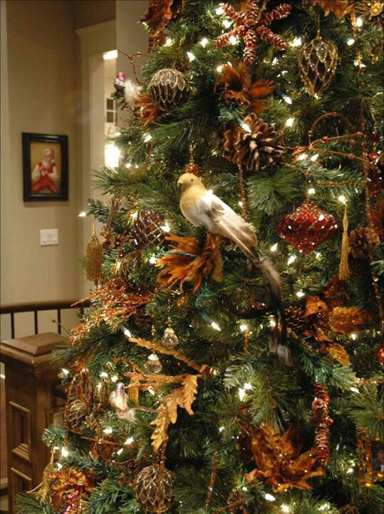 I Will Have A Woodland Tree Filled With Little Forest Animals Pine Cones Birds Etc Christmas Tree Natural Christmas Tree Christmas Tree Themes