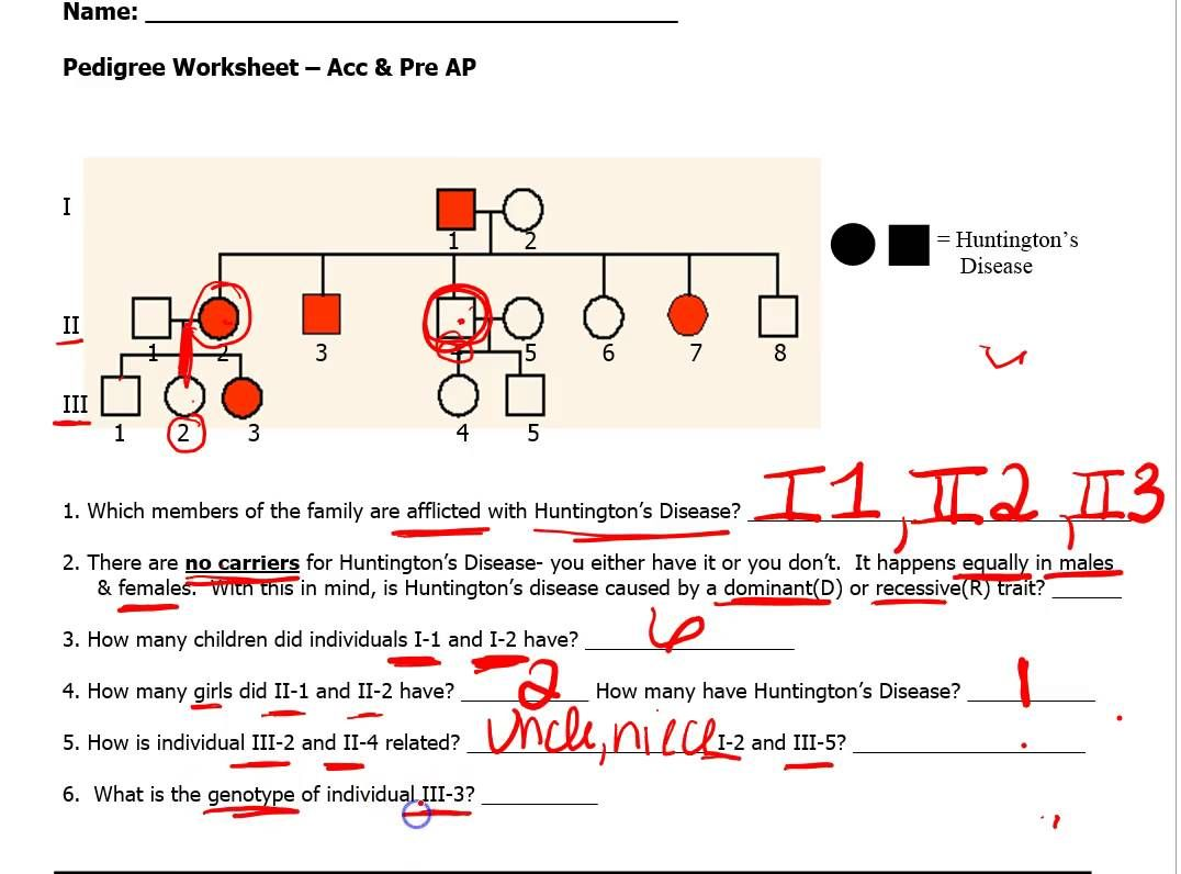pedigree worksheet | Practices worksheets, Worksheets ...