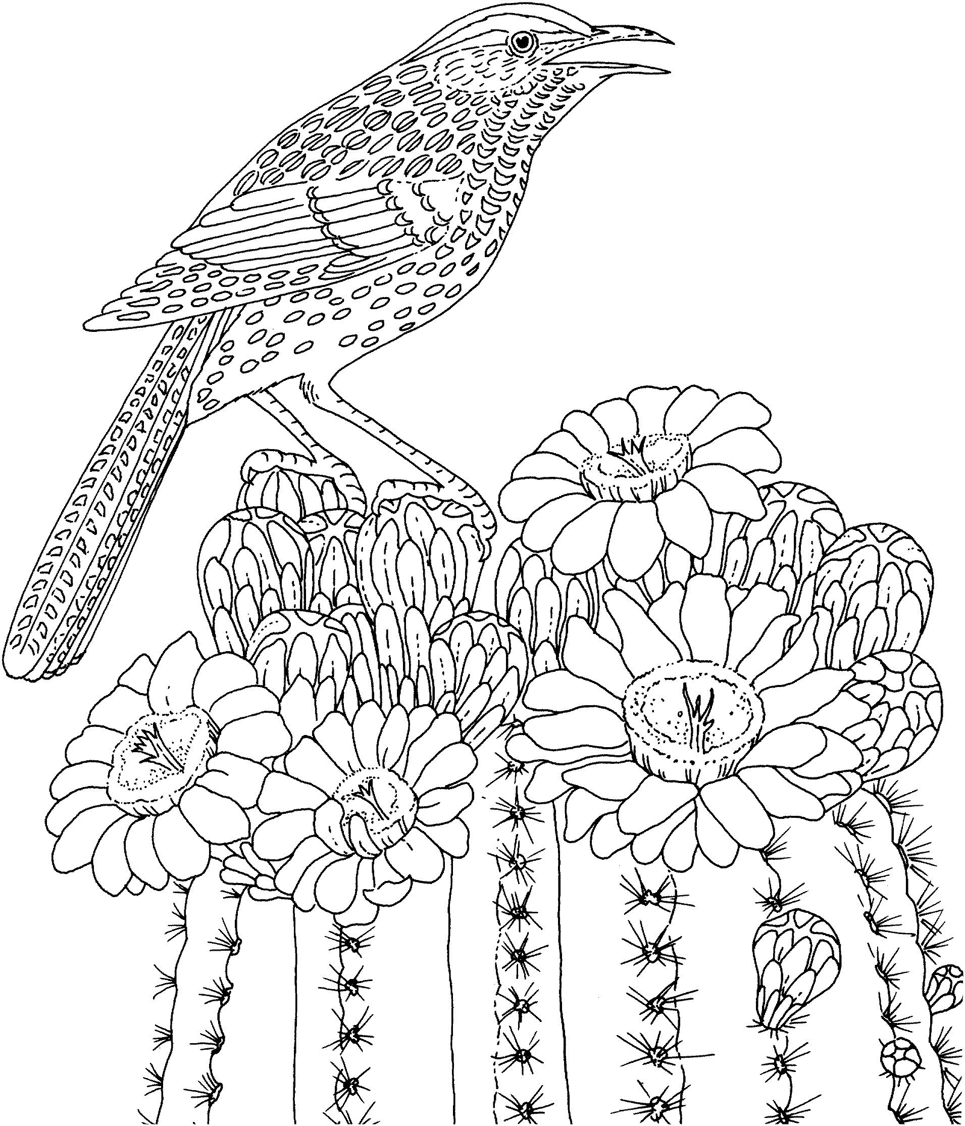 Ocean Coloring Pages Love To Color Description From Pinterest
