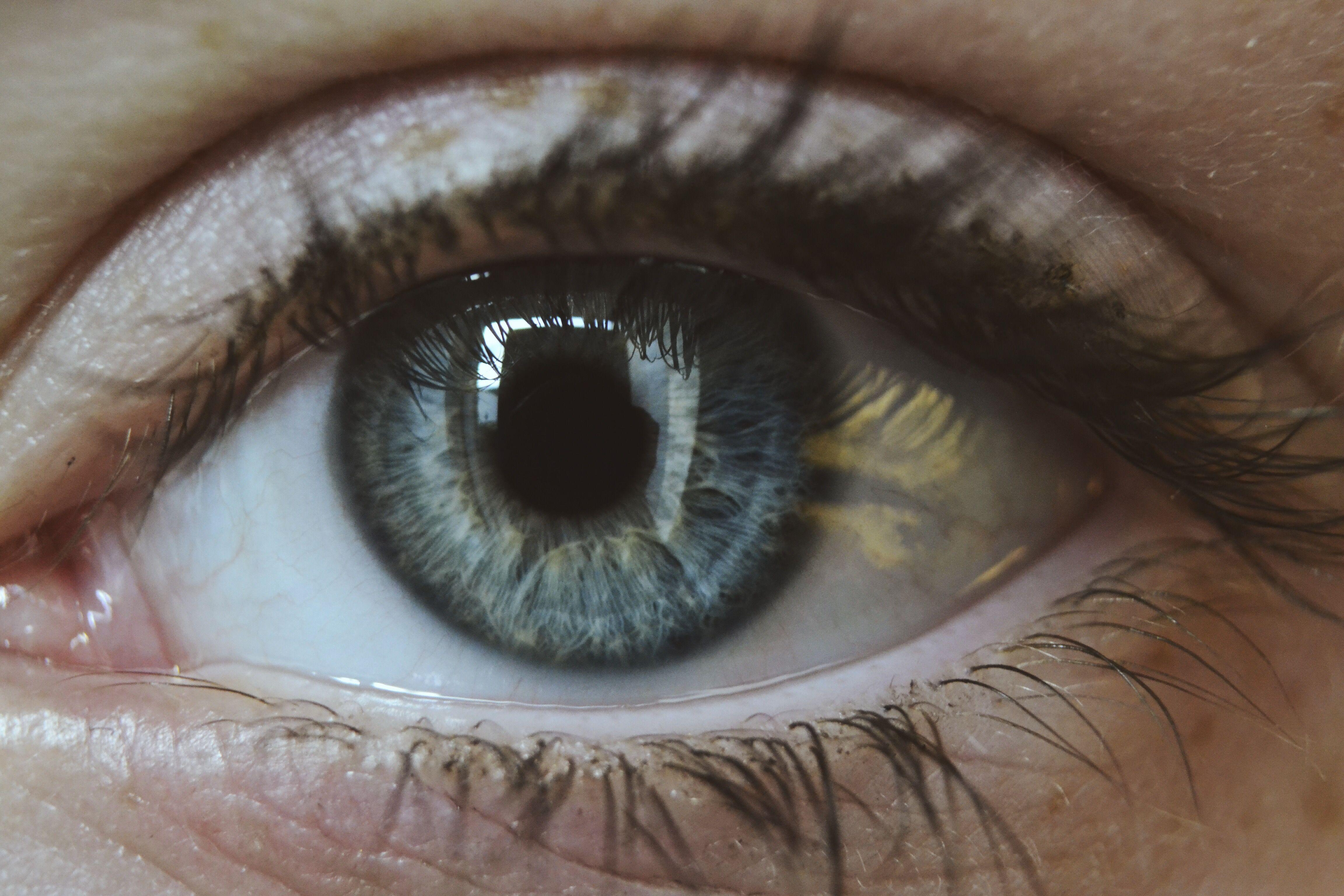 Macro Eye Photo Close Photography Blue Eyes Grey