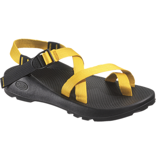 48a95dbd59b4 Chacos for Summer
