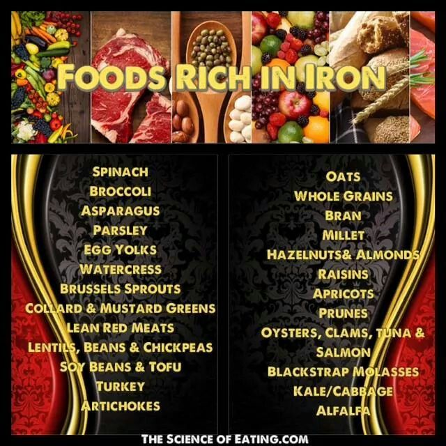 Rich Foods in Iron