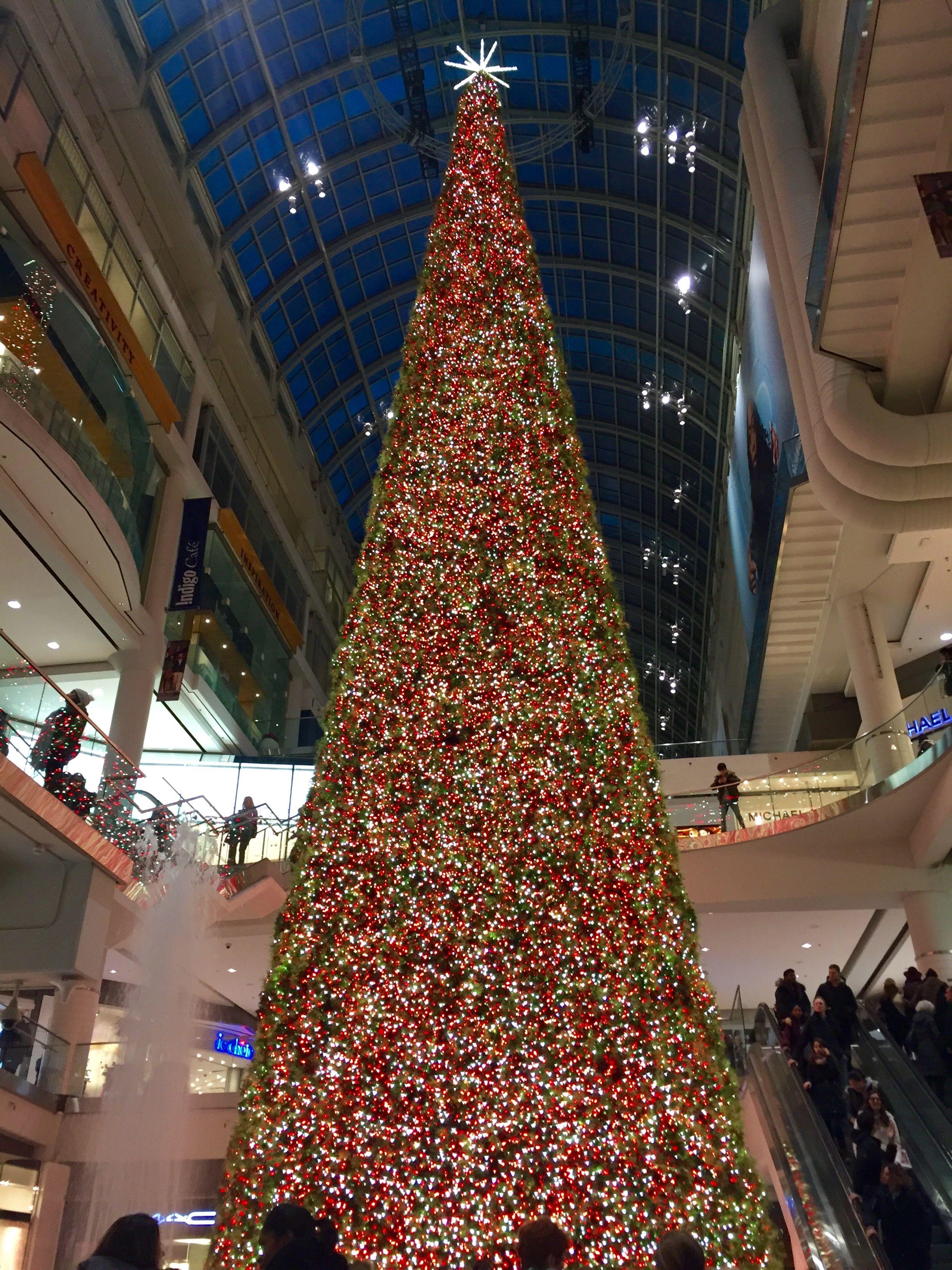 Christmas Tree Inside The Royal York Hotel, Toronto 2013 | Great Things In  Toronto | Pinterest | Trees, Toronto And Christmas Trees