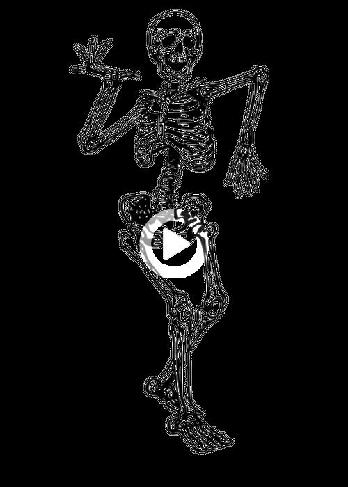 10 Minute Yoga Morning Routine For A Blissful Day Yogazini In 2021 Skeleton Drawings Skeleton Art Skeleton Tattoos