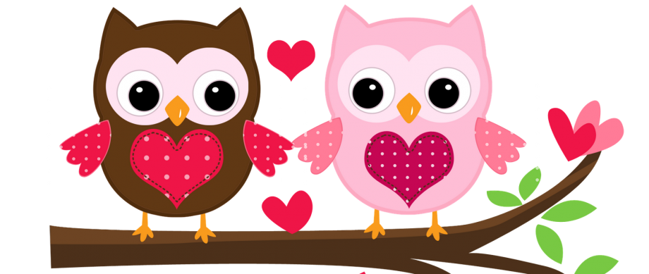 Buhos Animados Buscar Con Google Buhos Pinterest Owl Baby