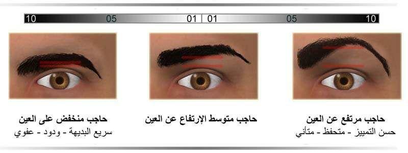 المسافة بين الحاجب و العين مدونة أسرار الوجه Body Language Face Reading Self Development