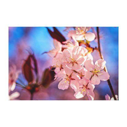 Sakura In The Tree Shade Canvas Print Zazzle Com Cherry Blossom Art Blossoms Art Sakura Cherry Blossom