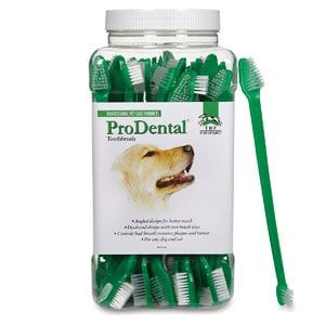 Best Dog Toothbrushes in 2020 Reviews Dog toothbrush