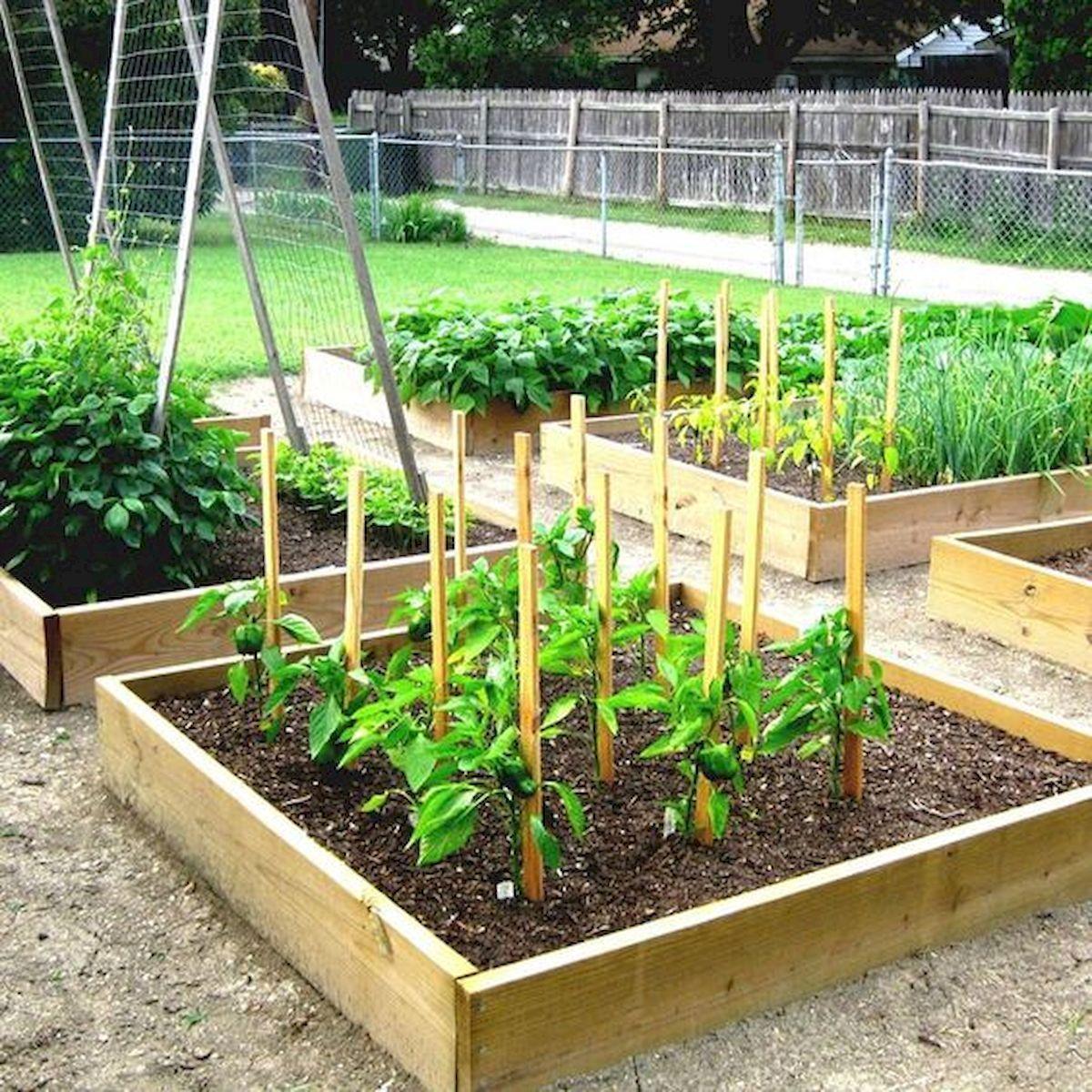 50 Inspiring Small Vegetable Garden Ideas (51) | Garden ...