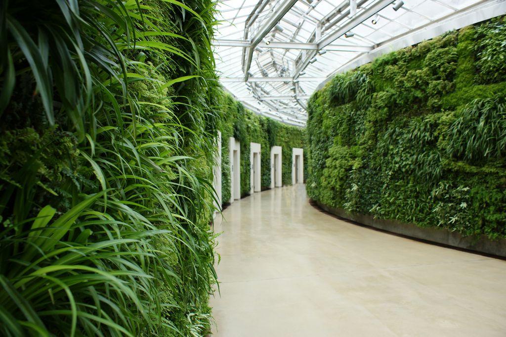 North america 39 s largest indoor green wall 4 vertikale begr nung indoor pinterest gr ne - Grune architektur ...