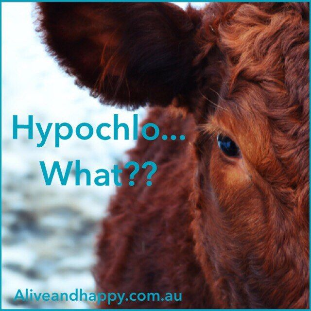 Alive and Happy — Hypochlorhydria - a fancy name for low stomach...