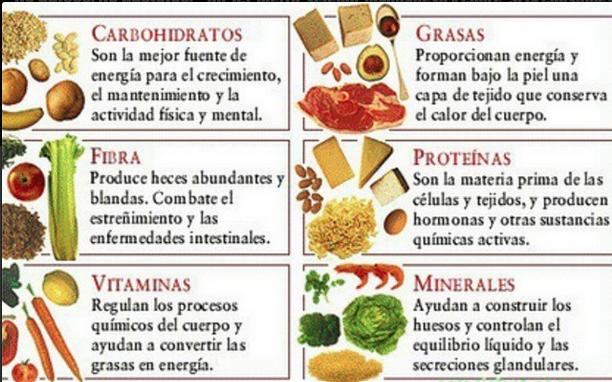lista de alimentos bajos en carbohidratos