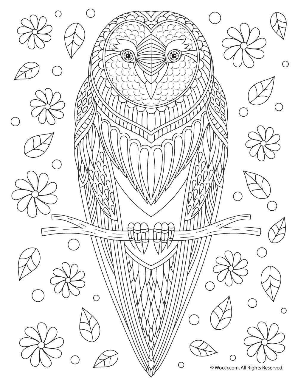 Owl Adult Coloring Page Owl Coloring Pages Bird Coloring Pages