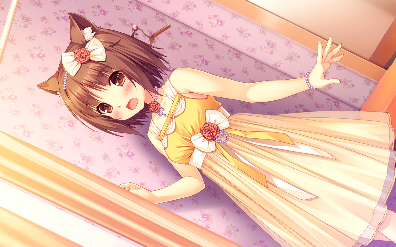 Nekopara, Visual Novel, Neko, Animal Ears, Dress Аніме