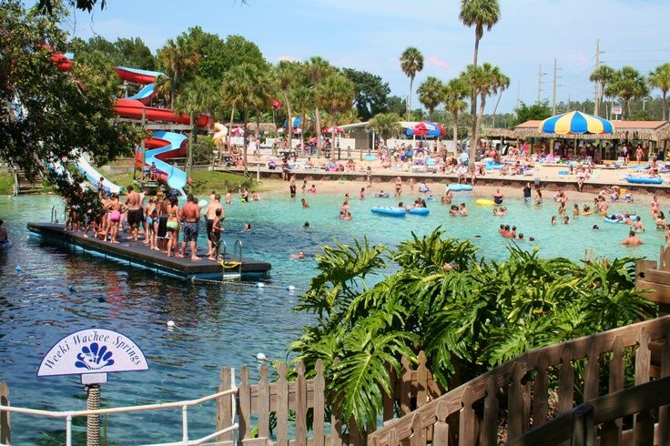 buccaneer bay weeki wachee coupons