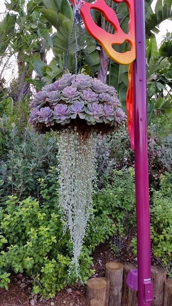 Creative Indoor And Outdoor Succulent Garden Ideas 2017 Succulent Garden Diy Diy Succulents Centerpiece Succulents