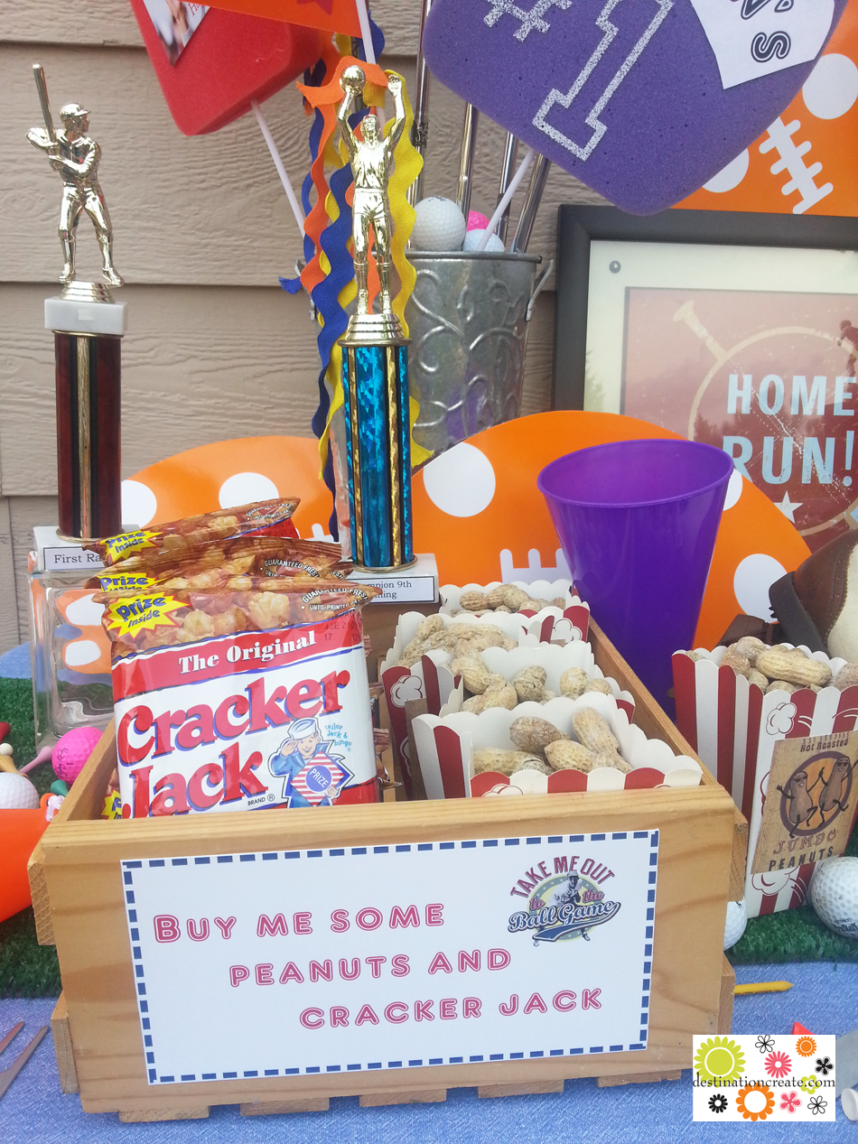 Sports Theme Birthday Party Designed From Thrift Store Finds