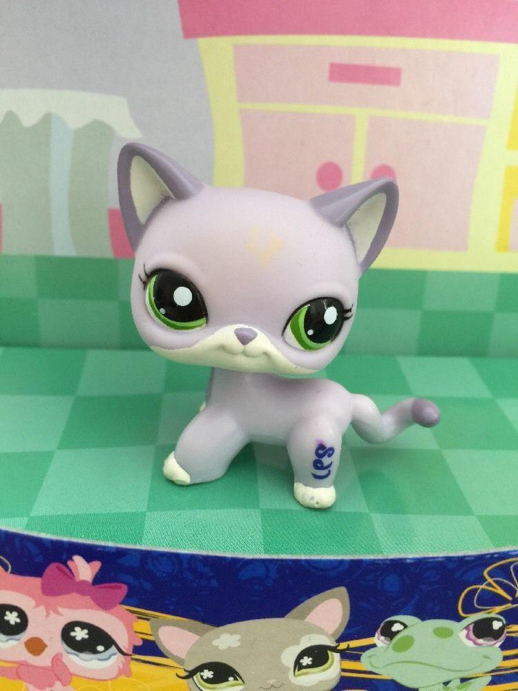 Us 3 50 Used In Toys Hobbies Preschool Toys Pretend Play Littlest Pet Shop Little Pets Pet Shop