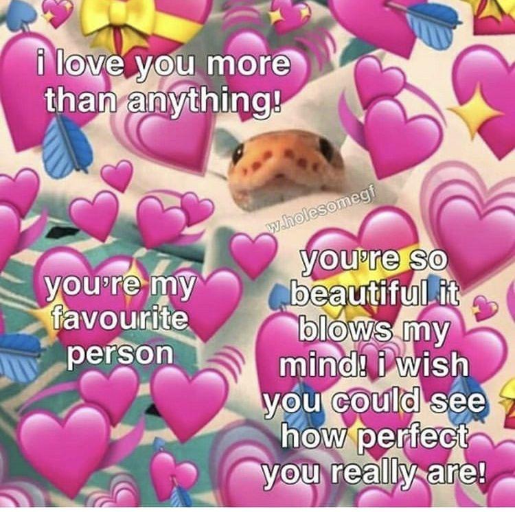 Pin By Liz On Wholesome Shit Cute Love Memes Love You Meme Love Memes