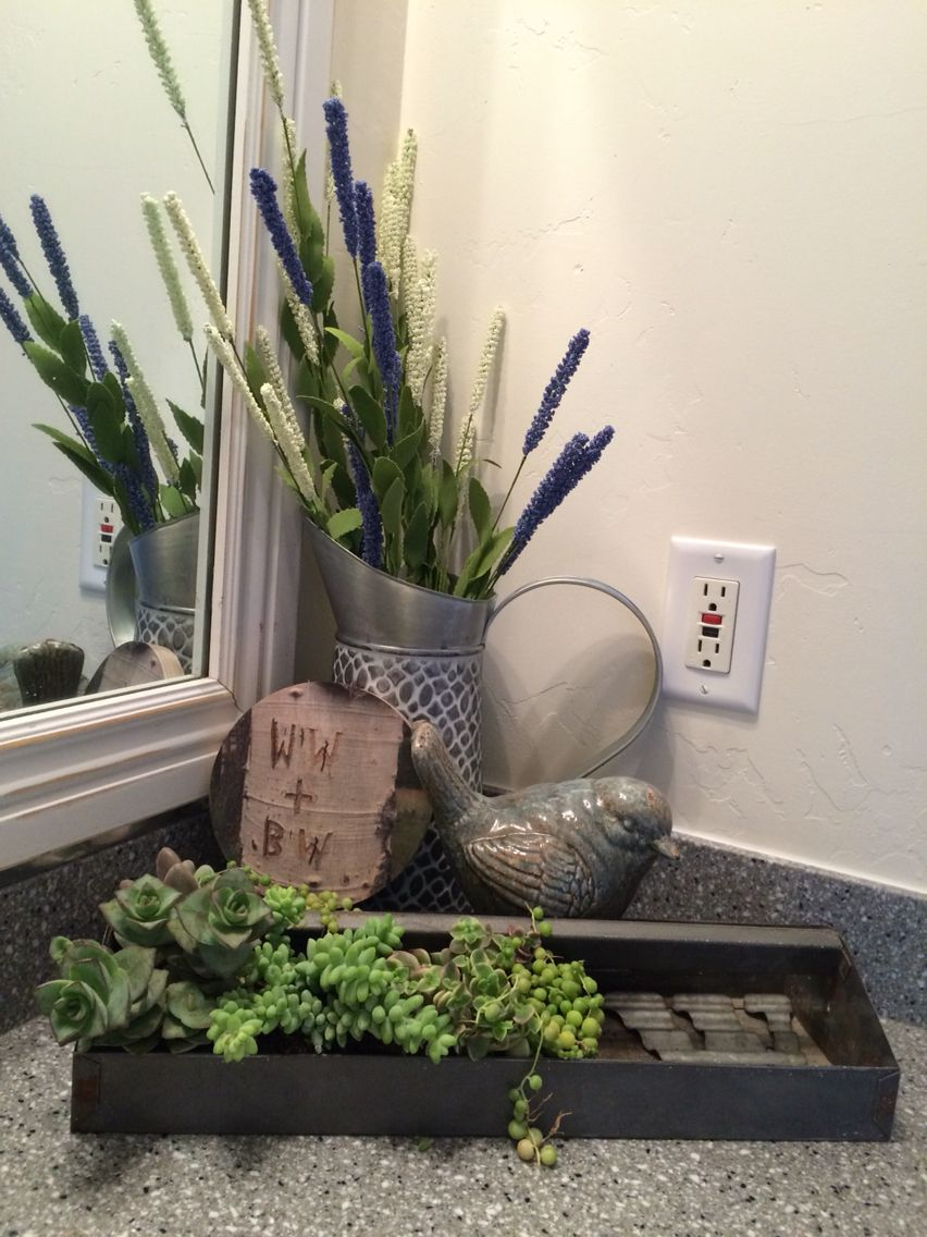 Bathroom counter. A little rustic with succulents.