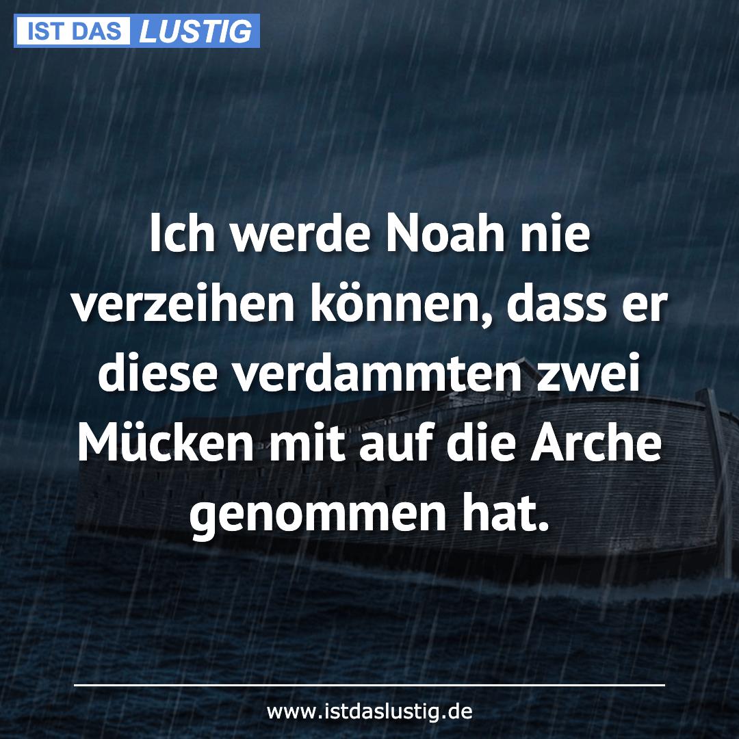 Ist das Lustig? #fallmemes Ich werde Noah nie verzeihen
