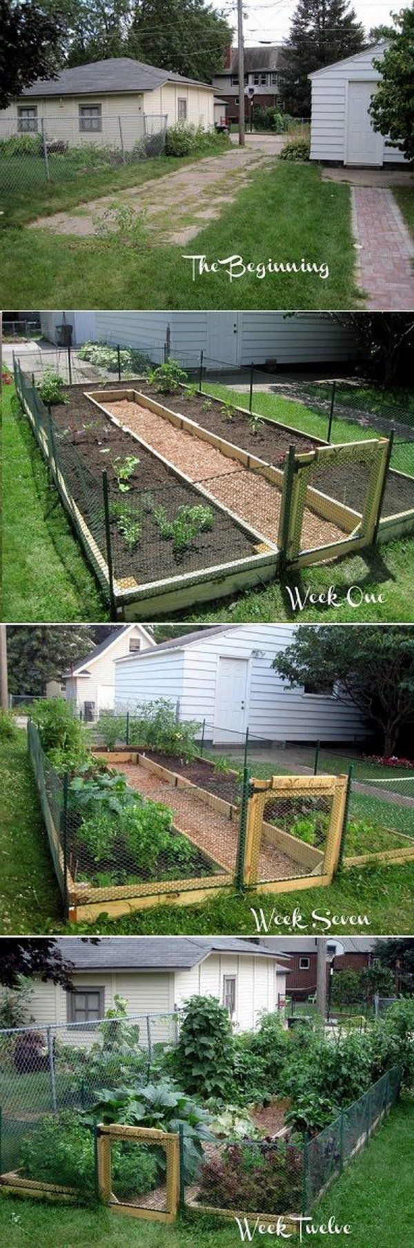 Vegetable garden design   Raised Garden Bed Ideas  Rabbit Gardens and Garden ideas