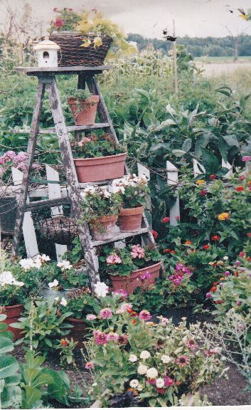 Use An Old Wooden Step Ladder And Put Potted Plants On Each Step I