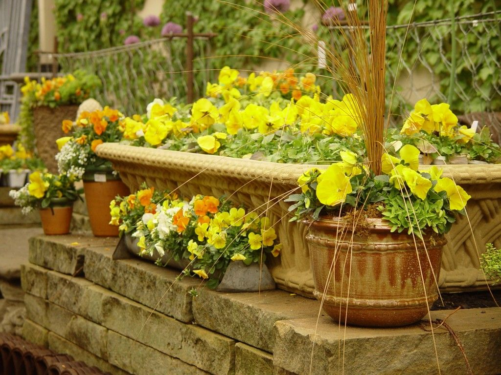 15 Beautiful Flower Pots That Will Inspire You Beautiful Flowers