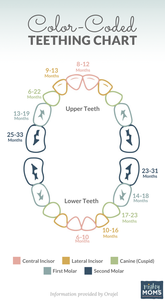 Photo of The 9 Signs of Teething You Need to Watch For – MightyMoms.club