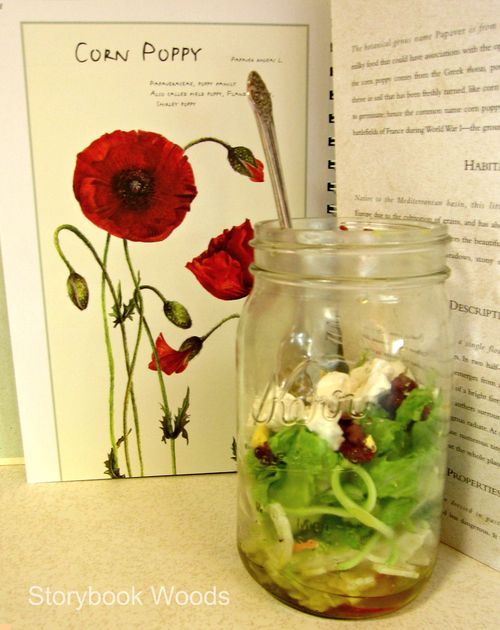 OK, I'm ticked off that I didn't invent this great use for old jars and lids. I'll do this traveling, layered salad (dressing on bottom, just shake it) when we have island picnics. Each guest will get a salad in a jar. Love this.