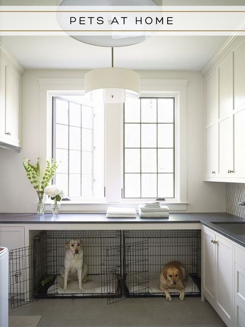 Pin By Aspen Ivy On Pets At Home Laundry Room Design Dog Rooms Laundry Room