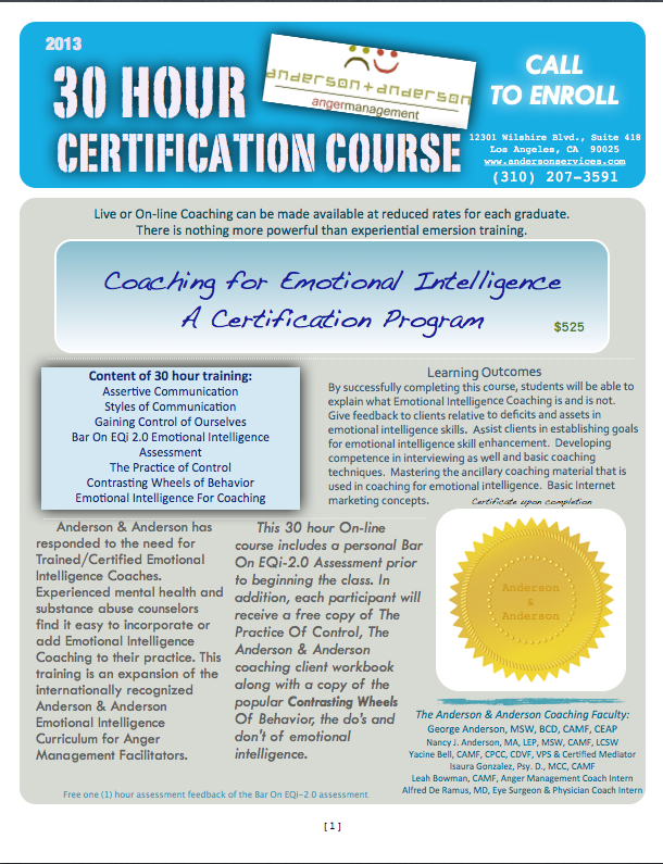 30 Hour Certification Course, Coaching for Emotional Intelligence ...