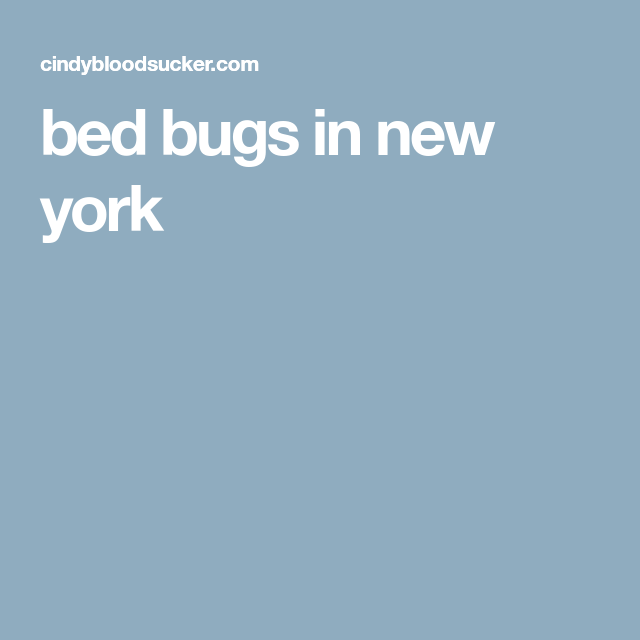 bed bugs in new york | Bed bugs, New york, Bugs
