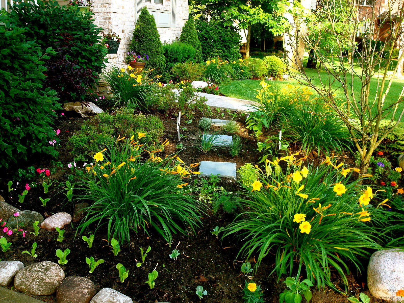 lovable front yard landscaping north texas with front yard landscaping plants shrubs garden. Black Bedroom Furniture Sets. Home Design Ideas