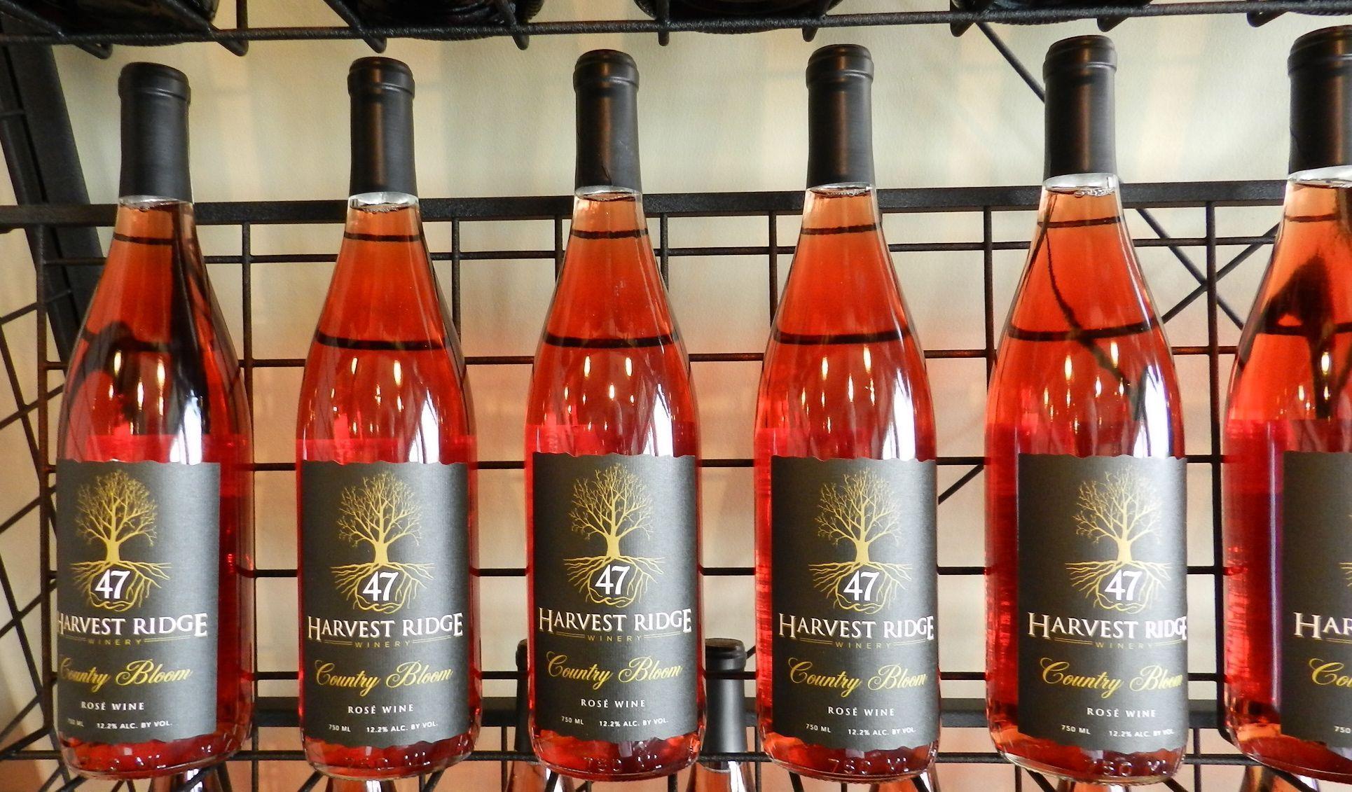 Harvest Ridge Winery Delaware Ridge Winery Winery Harvest