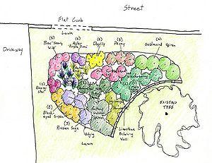 Schematic Showing Design For A Rain Garden Rain Garden Landscape Design Plans Plant Combinations