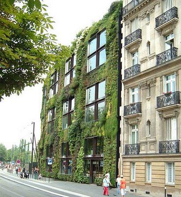 outdoor, vertical hydroponics by Patrick Blanc.