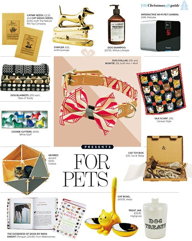 Our gold standard Christmas gift guide Pink dog collars